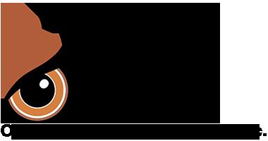OWLL-logo-full